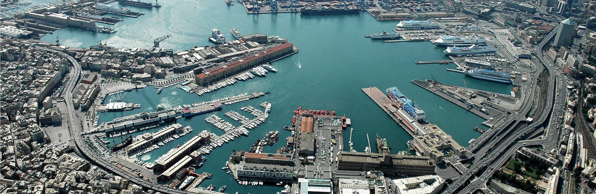 Genova Banafruit Import Export